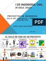 Proyectos de Inversion Ciclo, Tipos y Estructura
