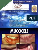 Mucocele Expo[1]
