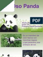 El Panda Maite Tilleria
