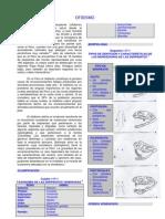 UT4-SUT5. OFIDISMO, ARACNOIDISMO, ECTOPARÁSITOS