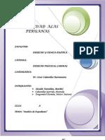 expediente laboral análisis-PRACTICA PROCESAL LABORAL