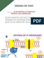 Diagramas de Fisio