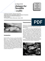 growout techniques for the pacific threadfin, polydactylus sexfilis