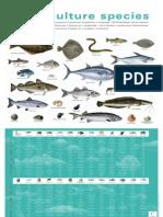ue aquaculture species poster