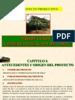 Proyecto Tara