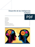 Des Inteligencias Multiples