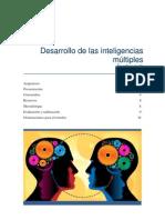 Des Inteligencias Multiples