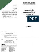 Wolkmer, Antonio C - Introducao Ao Pensamento Juridico Critico