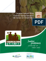 Cacao Comercio Justo Concepto