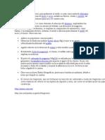 Los Compuestos de Magnesio.docxdinamica
