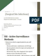 2013SSI.pdf