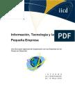 Report15 Informacion Tecnologia y La Pequena Empresa