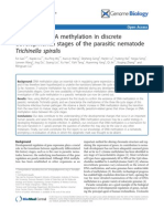 Differential DNA Methylation in Discrete
