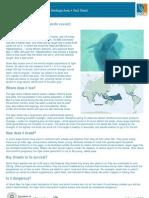 Tiger Shark Fact Sheet v2