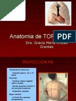anatomiadetorax-091207203941-phpapp02
