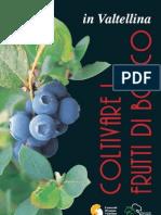 libro_frutti.pdf