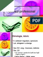 Stresul Profesional 2