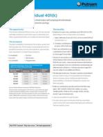 Putnam Individual 401(k)