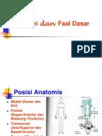 Anatomi Dan Faal Dasar