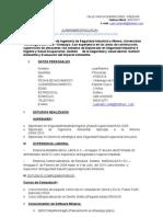 Curriculum Vitae-Ramiro Pino