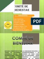 Presentación comite 2013