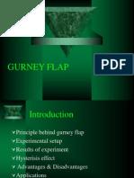 Gurney Flap