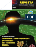 Revista Big Bang Faustiniano Vol. II. N°1