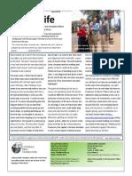 2013-06 Hilbert Newsletter