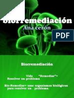 preseentacion-biorremediacion (1)