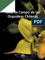 Orquideas Chilenas