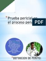 PRUEBA PERICIAL FORENSE.pptx