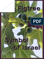 The Fig Tree — a Symbol of Israel
