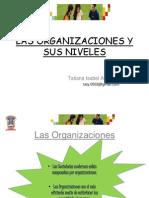 La organización y sus niveles