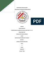 Plan de Negocio Artesania