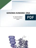 2a Clase - Estrutura Del Genoma Humano - 12.03.2012