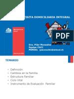 Familia y visita domiciliaria integral.pdf