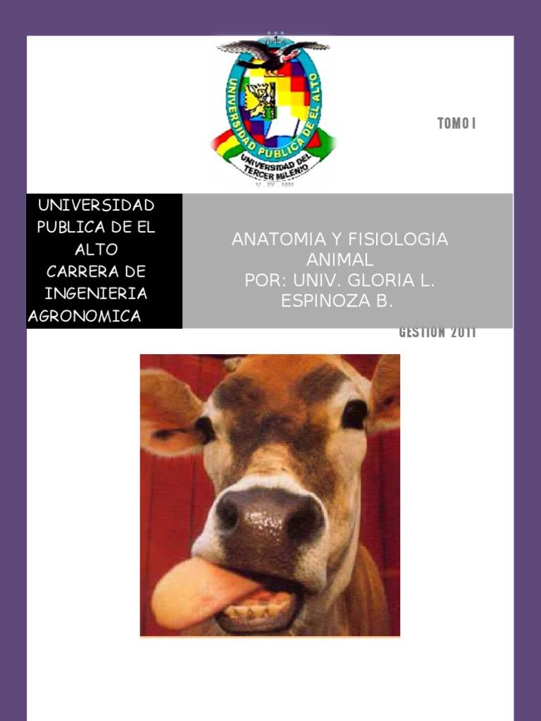 Anatonimia y Fisiologia Animal Vol. i