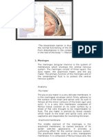 Part 2 Portrait_anatomy and Physiology of the Nervous System