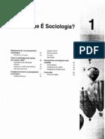 2 O que é sociologia - Anthony Giddens.pdf