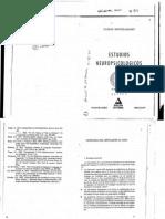 Mendilaharsu - Estudios neuropsicológicos