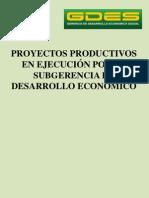 PROYECTOS PRODUCTIVOS_1