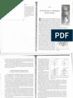 As Geometrias e a Meditação Mer-Ka-Ba - Drunvalo Melchizedeck