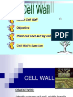 2.4.1 CELL WALL