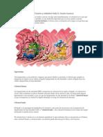 Definición de colesterol bueno y colesterol malo Dr