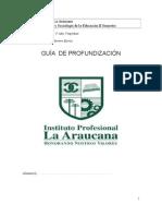 Guia 2º semestre 2012