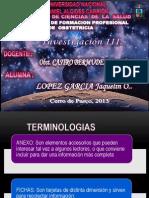 LOS ANEXOS.pptx