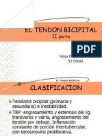El Tendon Bicipital