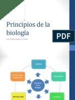Biologia 0 Principios de La Biologia