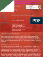 RSU II Unidad Grupo Biodents