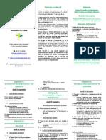 Programme formation Ado  version simplifiée